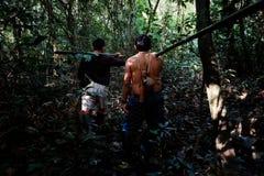 Caça tribal de Binan Tukum da pessoa idosa com seu filho para macacos na floresta úmida fotos de stock