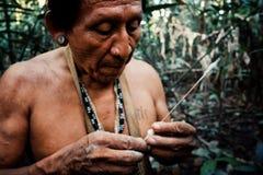 Caça tribal de Binan Tukum da pessoa idosa com seu filho para macacos na floresta úmida imagem de stock