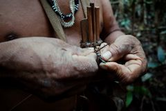 Caça tribal de Binan Tukum da pessoa idosa com seu filho para macacos na floresta úmida fotografia de stock