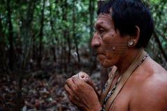 Caça tribal de Binan Tukum da pessoa idosa com seu filho para macacos na floresta úmida fotos de stock royalty free