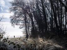 Caçador com cães em uma manhã do inverno Imagem de Stock Royalty Free