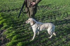 Caçador com seu cão Fotos de Stock Royalty Free