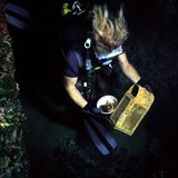 Caçador de tesouro Fotografia de Stock