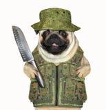 Caçador do cão com uma faca grande imagem de stock royalty free