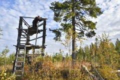 Caçador dos alces do lado direito que está em uma torre da caça imagens de stock royalty free