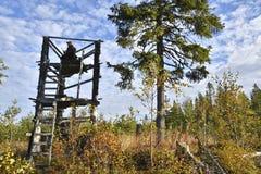 Caçador dos alces do lado esquerdo que senta-se em uma torre da caça imagens de stock