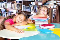 Caçoa adormecido em uma biblioteca Fotos de Stock Royalty Free