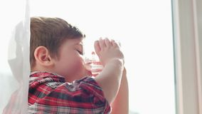 Caçoe a água potável, criança sedento, água pura para os cuidados médicos da criança, luz solar no vidro da água video estoque