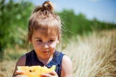 Caçoe comer a fatia de melancia amarela em um campo Fotos de Stock Royalty Free