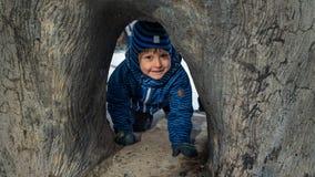 Caçoe o jogo sob a árvore no tempo de inverno Fotografia de Stock