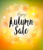 Caída Autumn Colorful Sale Background Vector Imagenes de archivo