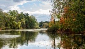 Caída Autumn Portrait Forest Pond Background Fotografía de archivo