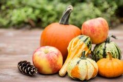 Caída Autumn Season Concept Pumpkins y calabazas y manzanas Foto de archivo