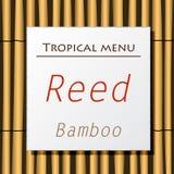 Caída blanca de la bandera en bambú Foto de archivo libre de regalías