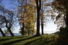 Caída: día soleado agradable Foto de archivo libre de regalías