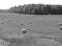 Caída de Canadá Foto de archivo