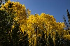 Caída de Colorado imagen de archivo