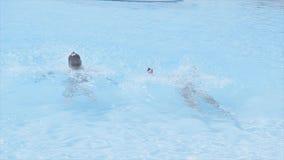 Caída de dos chicas jóvenes todo el peso encendido apoya en piscina Día asoleado del verano holidays Chapoteo almacen de video