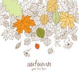 Caída de la hoja del otoño Imagen de archivo libre de regalías