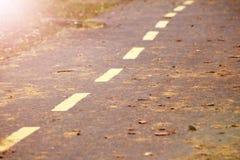 Caída de la hoja del otoño Hojas del amarillo en el lado del camino forestal Fotografía de archivo