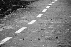 Caída de la hoja del otoño Hojas del amarillo en el lado del camino forestal Fotografía de archivo libre de regalías