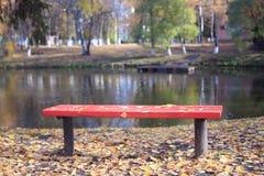 Caída de la hoja en parque del otoño Fotografía de archivo libre de regalías