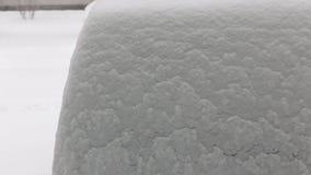 Caída de la nieve almacen de metraje de vídeo