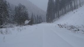 Caída de la nieve en bosque de la montaña almacen de video