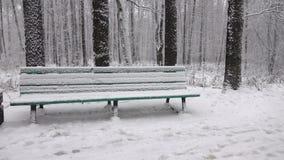 Caída de la nieve en parque de la ciudad metrajes