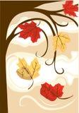 Caída de las hojas de otoño foto de archivo
