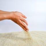 Caída de los granos del arroz Imágenes de archivo libres de regalías
