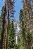 Caída de Yosemite en el valle de Yosemite, parque nacional imagen de archivo