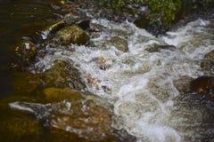 Caída del agua Imagen de archivo
