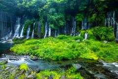 Caída del agua de Shiraito imagen de archivo