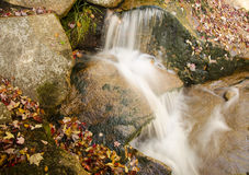 Caída del agua (follaje) Imagen de archivo libre de regalías