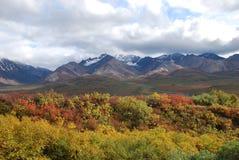 Caída del parque nacional de Denali Imagenes de archivo