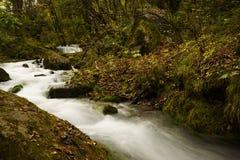 Caída del río y del agua en el valle Jiuzhaigou Fotos de archivo