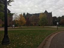 Caída en campus Fotos de archivo