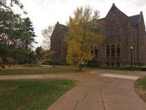 Caída en campus Imagen de archivo libre de regalías