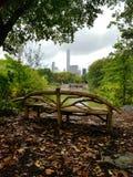 Caída en Central Park Nueva York Fotos de archivo libres de regalías