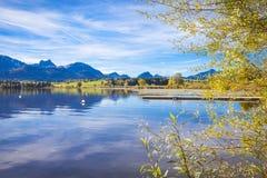 Caída en el lago fotos de archivo libres de regalías