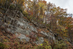 Caída en el parque nacional de Great Smoky Mountains Foto de archivo