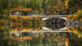 Caída en el río Imagenes de archivo