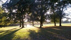 Caída en Inglaterra - salida del sol imágenes de archivo libres de regalías