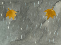 Caída - escena del otoño Fotos de archivo libres de regalías