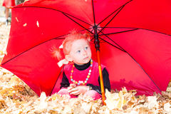 Caída Muchacha linda del niño que juega con las hojas caidas en otoño Fotografía de archivo libre de regalías