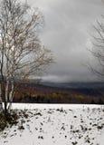 Caída Nevado Fotos de archivo libres de regalías