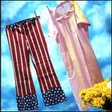 Caída spangled estrella de los pantalones en la línea Imagenes de archivo