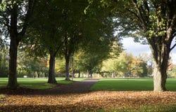 Caída temprana en Alton Baker Park Fotografía de archivo libre de regalías