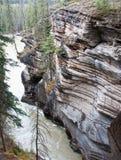 Caídas de Athabasca Fotografía de archivo